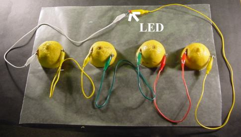 lemon battery science project